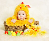 Easter Baby in basket with eggs in chicken costume. Baby in Easter basket with eggs in chicken costume. Easter holiday concept: nest with baby chick Stock Photos