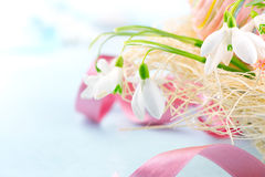 Easter background. Beautiful spring snowdrop flower with decorations Royalty Free Stock Images
