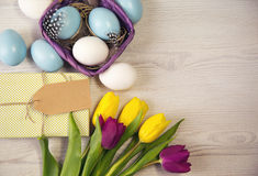 Easter background with blue and white eggs in nest and purple and yellow tulips Stock Photos