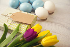 Easter background with blue and white eggs and purple and yellow tulips Stock Images