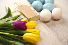 Easter background with blue and white eggs and purple and yellow tulips Stock Photos