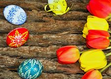 Easter background on the board of oak bark. Beautiful Easter background on the board of oak bark Stock Images