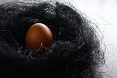 Brown chicken egg in the nest of sisal. Easter background. Brown chicken egg in the nest of sisal royalty free stock photos