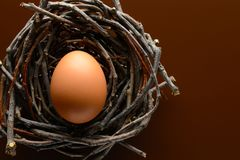 Brown chicken egg in the nest of twigs. Easter background. Brown chicken egg in the nest of twigs stock photography