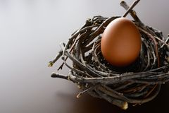 Brown chicken egg in the nest of twigs. Easter background. Brown chicken egg in the nest of twigs royalty free stock photography