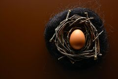 Brown chicken egg in the nest of twigs. Easter background. Brown chicken egg in the nest of twigs stock image