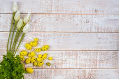 Colorful easter eggs and tulips over white wooden table Stock Images