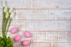 Colorful easter eggs and tulips over white wooden table Royalty Free Stock Image