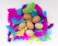 Easter background with colorful feathers and eggs. Colored feathers and eggs, interesting background about Easter stock images
