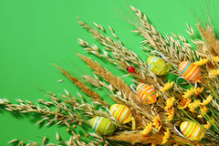 Easter background. Decorative eggs and dry grass on a green background. Stock Photos