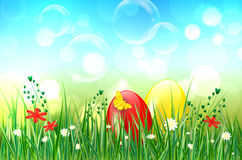 Easter background with easter eggs, grass and bubbles. Easter background with easter eggs, grass, butterfly, flowers, bubbles and bokeh background. Vector Royalty Free Stock Photos