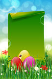 Easter background with easter eggs in grass and paper copyspace. Easter background with easter eggs, grass, flowers and green blank paper for your message Stock Images