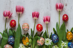 Easter Background with easter eggs and pink tulips on green grass royalty free stock images