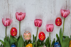 Easter Background with easter eggs and pink tulips on light wooden background Royalty Free Stock Photo
