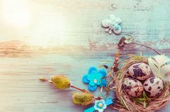 Easter background with Easter eggs and spring flowers. Top view with copy space. Easter background with Easter eggs, pussy-willow and spring flowers. Top view Royalty Free Stock Photo
