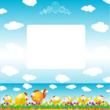 Easter background egg chicken hen color Stock Photography