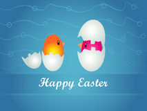 Easter background with eggs and chikens Royalty Free Stock Photos