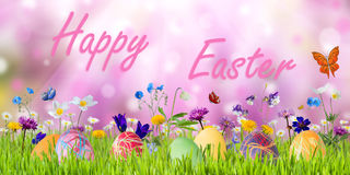 Easter Background with Eggs and Flowers Royalty Free Stock Photos