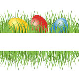 Easter background with eggs in grass Stock Image