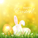 Easter background with eggs and rabbit Stock Photos