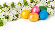 Easter background with eggs and spring flowers. Text space Stock Images