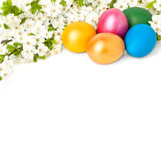 Easter background with eggs and spring flowers Royalty Free Stock Photography