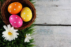Easter background with grass. Easter eggs on wood backgrpund Stock Photos