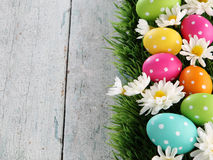 Easter background with grass. Easter eggs on wood backgrpund Stock Images