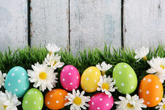 Easter background with grass. Easter eggs on wood backgrpund Royalty Free Stock Photos