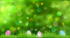 Easter background with green grass Royalty Free Stock Image