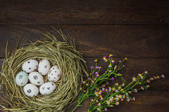 Easter background.Happy easter eggs pained on nest also. Top view easter background.Happy easter eggs pained on nest also beautiful flower.Texture rustic wooden Royalty Free Stock Photo