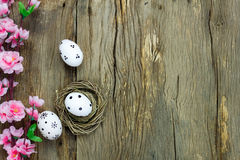Easter background.Happy easter eggs pained on nest also. Top view easter background.Happy easter eggs pained on nest also beautiful pink flower.Texture rustic Stock Image