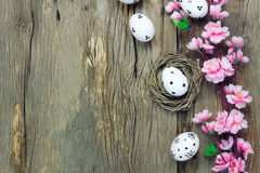 Easter background.Happy easter eggs pained on nest also. Top view easter background.Happy easter eggs pained on nest also beautiful pink flower.Texture rustic Stock Photography