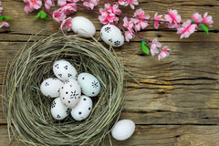 Easter background.Happy easter eggs pained on nest also. Top view easter background.Happy easter eggs pained on nest also beautiful pink flower.Texture rustic Stock Images