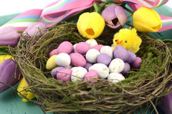 Easter background with painted Easter eggs in birds nest. Happy Easter background with painted Easter eggs in birds nest, and yellow and purple silk tulips and Royalty Free Stock Photography