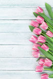Easter background with pink tulips Stock Photo
