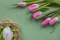Easter background with pink tulips and egg on green glitter background with copy space royalty free stock photos