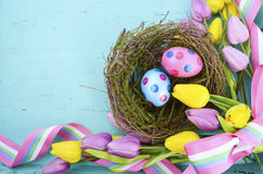 Easter background with polka dot Easter eggs in birds nest. Happy Easter background with polka dot Easter eggs in birds nest, and yellow and purple silk tulips Stock Images
