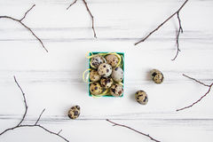 Easter background, quail eggs in a bright box decorated with tree branches. Flat lay, top view, view from above Stock Images