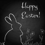 Easter background with rabbit on chalkboard Stock Image