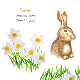 Easter background with rabbit Stock Image