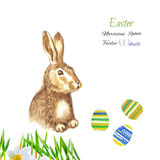 Easter background with rabbit Royalty Free Stock Images