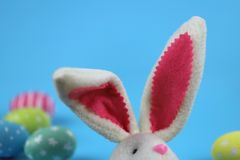 Easter background. On the right are the Easter bunny`s ears and hand-painted colored eggs on the back on a blue background. stock photo