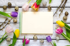 Easter background with tulips, eggs and pussy. Top view with cop Royalty Free Stock Photo