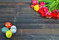 Easter background on a wooden board with Easter eggs and tulips. Royalty Free Stock Images