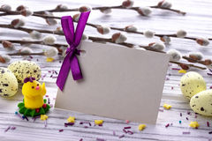 Easter Background with yellow easter eggs pussy willow branches purple ribbon and little chickens space for text. Royalty Free Stock Photo