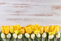 Easter Background with yellow tulips and daffodil flowers with Easter Eggs. Copy space Royalty Free Stock Image
