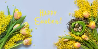 Easter banner of yellow tulips, mimosa on blue. Hello spring. Easter banner of yellow tulips, mimosa on blue. Top view. Hello spring stock image