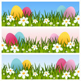Easter Banners with Eggs and Flowers. Collection of Easter or spring banners with Easter eggs, green grass and flowers, in three different versions. Eps file Stock Photos