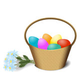 Easter basket and blue daisy Royalty Free Stock Image